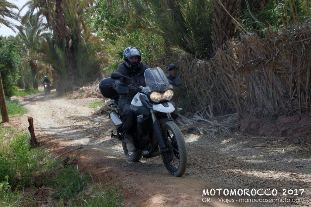 Viaje A Marruecos En Moto 2017 Costa Y Atlas 46