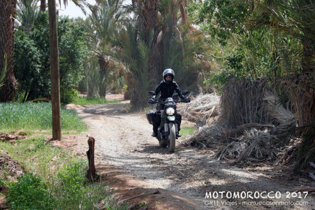 Viaje A Marruecos En Moto 2017 Costa Y Atlas 47
