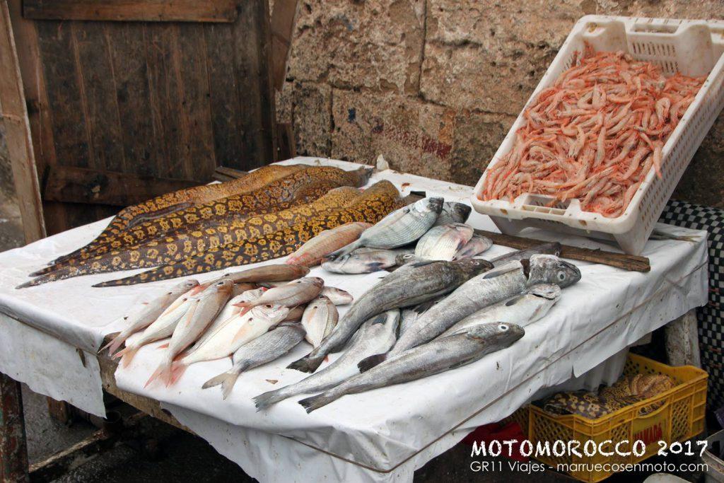 Viaje A Marruecos En Moto Costa Atlantica 7