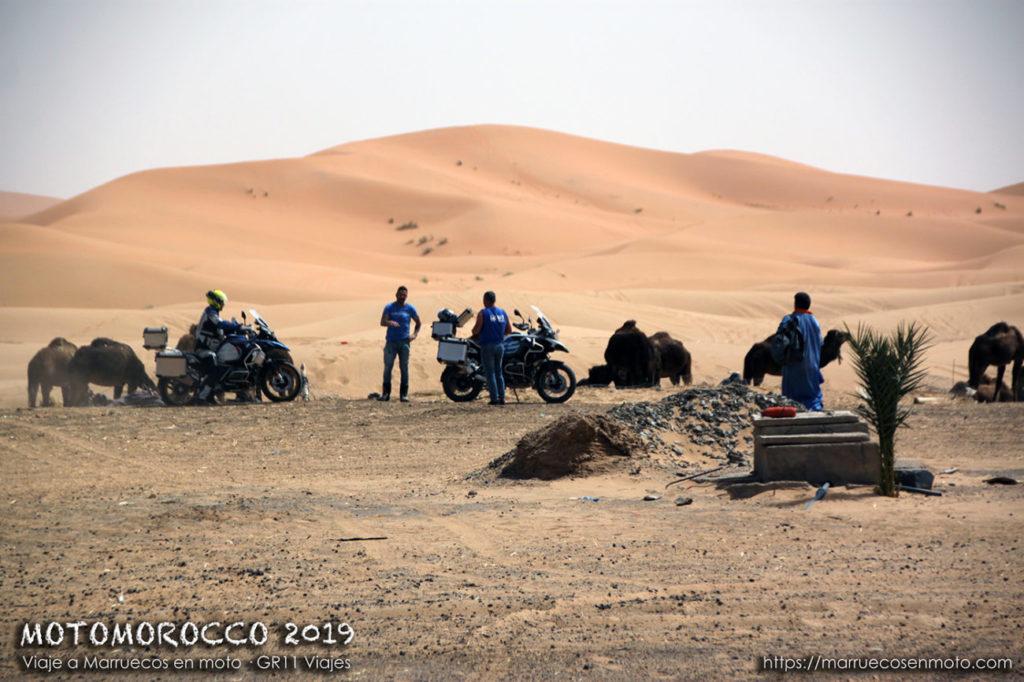 Viaje A Marruecos En Moto 2019 Semana Santa 45