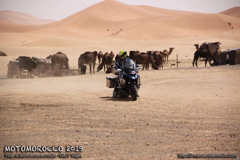 Viaje A Marruecos En Moto 2019 Semana Santa 51